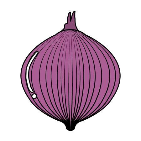 タマネギ新鮮な分離アイコン ベクトル イラスト デザイン