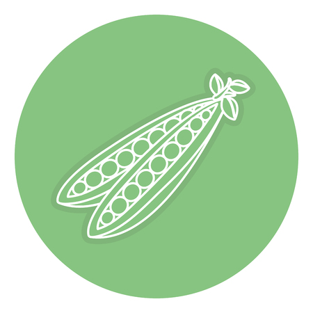 String bean fresh isolated icon vector illustration design