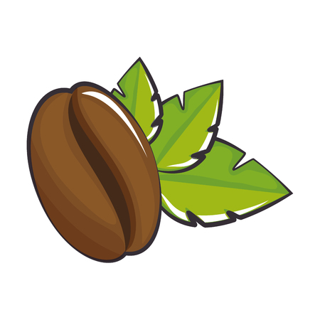coffee bean and leaves icon over white background vector illustration