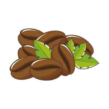 koffieboon en bladeren pictogram over witte achtergrond vectorillustratie