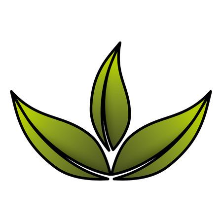 잎 식물 생태 아이콘 벡터 일러스트 디자인