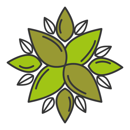 leaf plant ecology icon vector illustration design