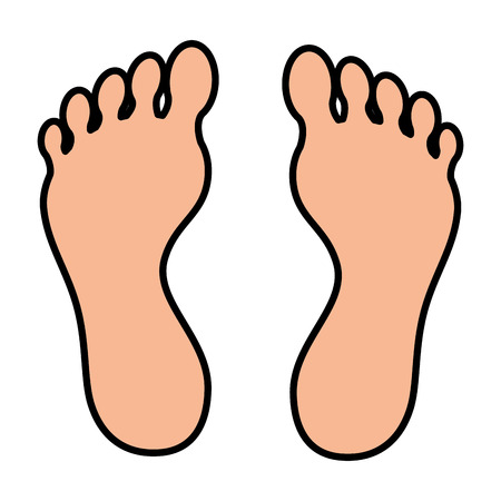 Foot plants isolated icon vector illustration design Ilustração