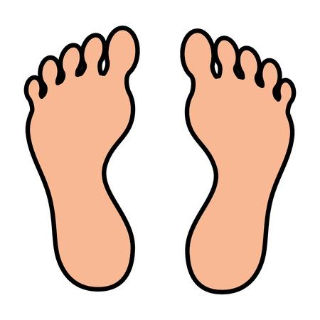 Plantas de pie aislado icono de diseño de ilustración vectorial Foto de archivo - 84596458