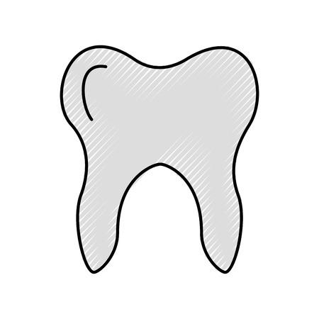 Human tooth isolated icon vector illustration design Ilustracja