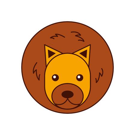 Wild lion isolated icon vector illustration design