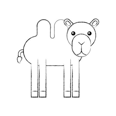 아프리카 낙타 격리 된 아이콘 벡터 일러스트 레이 션 디자인