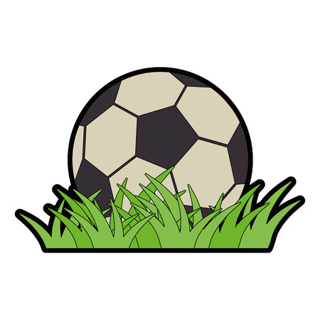 soccer ball icon over white background vector illustration