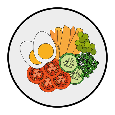gourmet salad dish icon over white background vector illustration