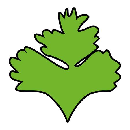 Hojas de cilantro icono sobre ilustración de vector de fondo blanco Foto de archivo - 84665967