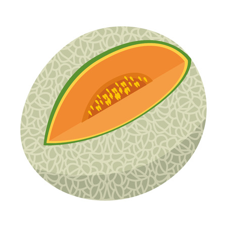 Melon delicious fruit icon vector illustration graphic design, isolated Imagens - 84729923
