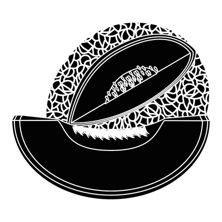 Melon delicious fruit icon vector illustration graphic design