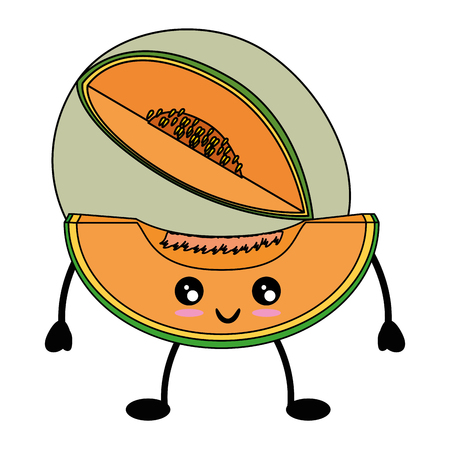 Melon delicious fruit cute kawaii cartoon icon vector illustration design