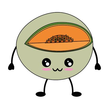 Melon delicious fruit cute kawaii cartoon icon vector illustration design