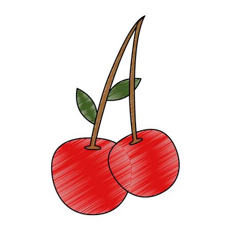 Cherries sweet fruits icon vector illustration graphic design Illusztráció
