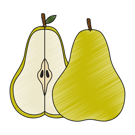 Pear delicious fruit icon vector illustration graphic design Ilustração