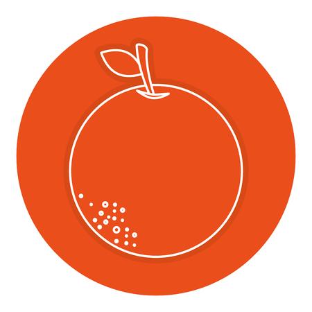 오렌지 감귤류 과일 아이콘 벡터 일러스트 디자인