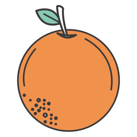 オレンジ色の柑橘系の果物のアイコン ベクトル イラスト デザイン  イラスト・ベクター素材