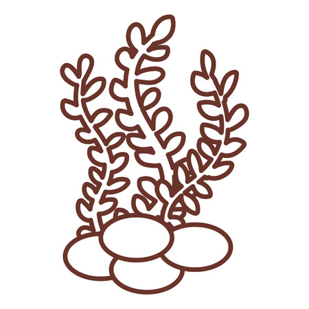 freshwater aquarium plants: sea weed isolated icon vector illustration design