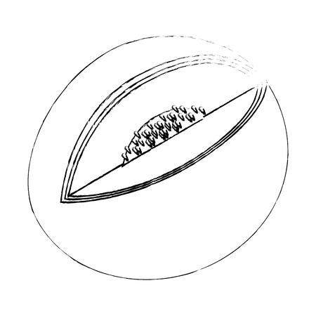 白い背景のベクトル図にメロン果物アイコン。  イラスト・ベクター素材