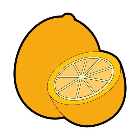 orange fruit icon over white background vector illustration Ilustracja