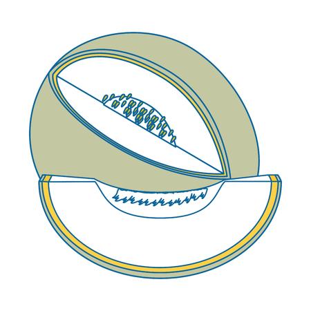 白い背景のベクトル図にメロン果物アイコン