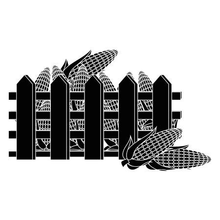 新鮮なトウモロコシの穂軸ベクトル イラスト デザイン フェンス