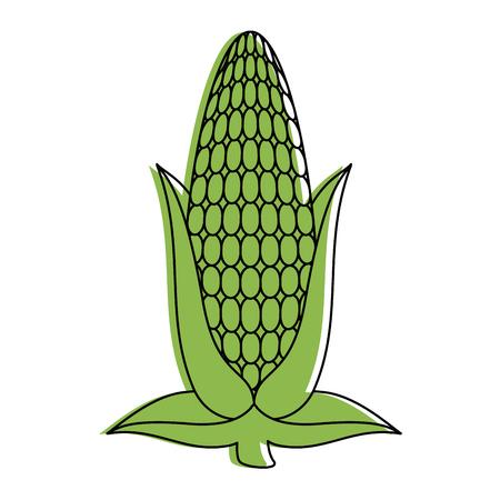 新鮮なトウモロコシ穂軸のアイコン ベクトル イラスト デザイン