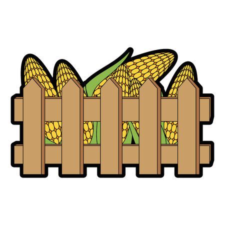新鮮なトウモロコシの穂軸のアイコンとフェンス。  イラスト・ベクター素材