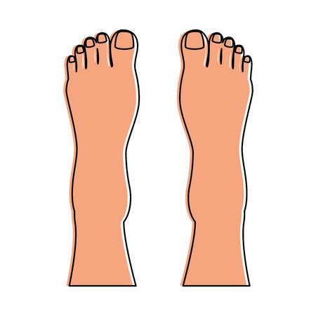 Human feet isolated icon vector illustration design Stock fotó - 85025895