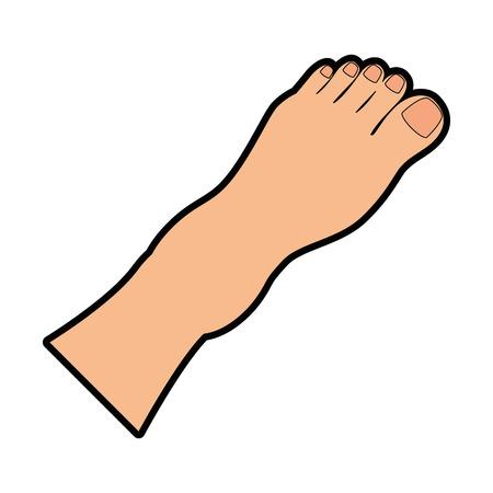 Menselijke voeten geïsoleerd pictogram vector illustratie ontwerp