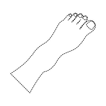 Human feet isolated icon vector illustration design