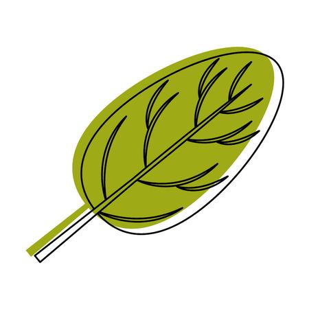 흰색 배경 벡터 일러스트 레이 션 위에 시금치 잎 아이콘 일러스트