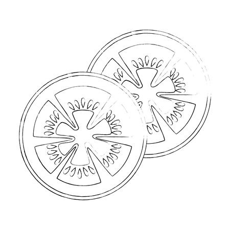 tomato slice icon over white background vector illustration