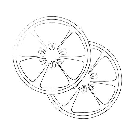 白い背景のベクトル図にキュウリ スライス アイコン