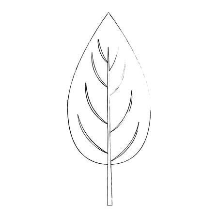 白い背景のベクトル図にホウレンソウ葉アイコン