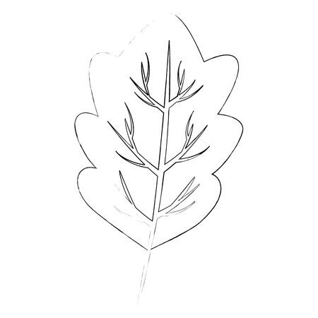 白い背景のベクトル図の上のレタス葉アイコン