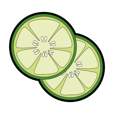cucumber slice icon over white background vector illustration
