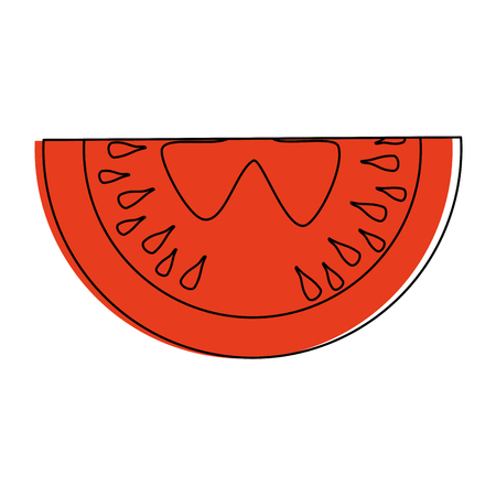 Sliced tomato vegetable vector icon vector illustration graphic design Illustration