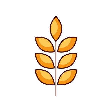 밀 또는 보리 귀 분기 곡물 수확 흰색 배경 벡터 일러스트 레이 션 스톡 콘텐츠 - 85127884