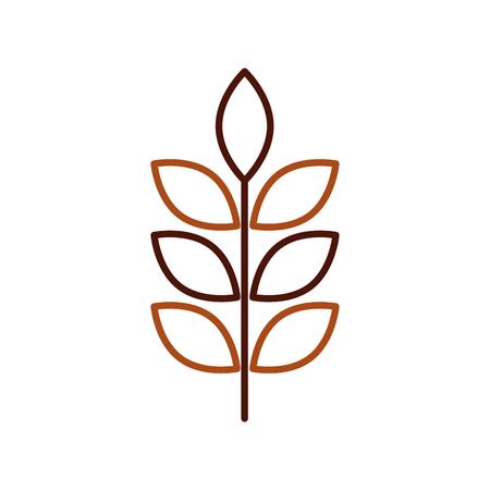 tarwe of gerst oren tak granen oogst op witte achtergrond vectorillustratie