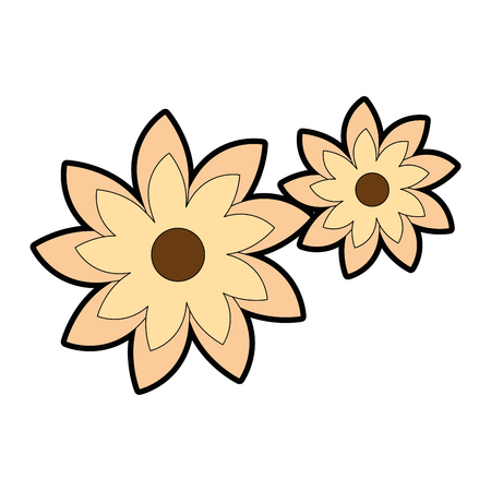 beautiful flowers decorative icon vector illustration design