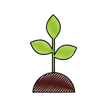 plant growing investment concept business vector illustration Ilustrace