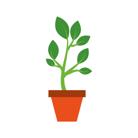 Growing tree green sprouts rising from ceramic pot concept
