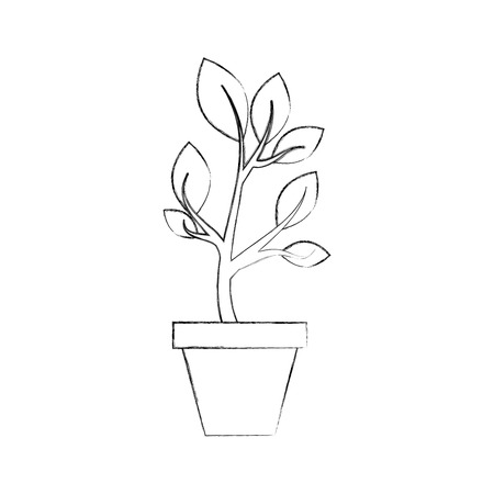 growing plant sprouts rising from ceramic pot concept vector illustration Illustration