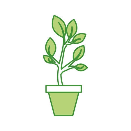 growing tree green sprouts rising from ceramic pot concept vector illustration