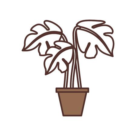 potted plant decoration interior natural element vector illustration, Иллюстрация
