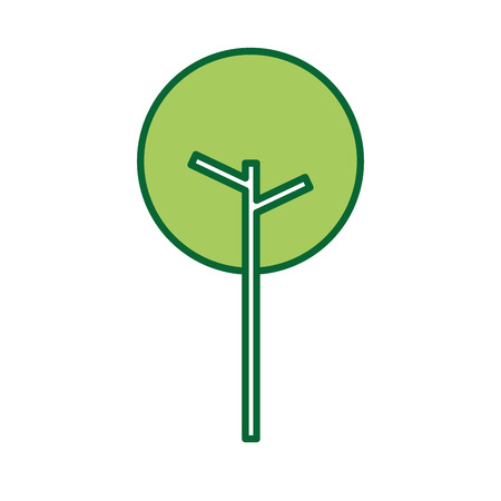 tree natural foliage park plant vector illustration 向量圖像