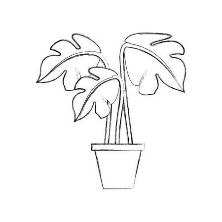 Outline illustration of potted plant decoration interior natural element.