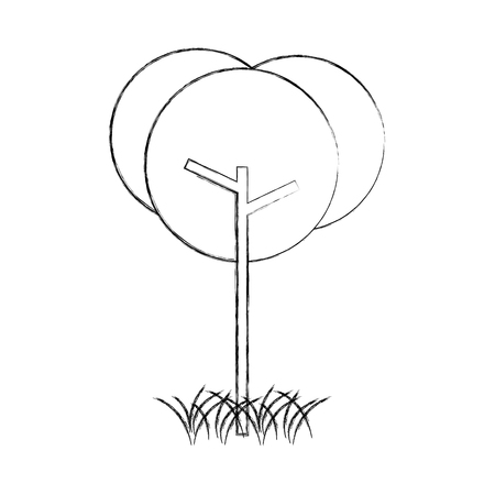 tree natural foliage park plant vector illustration Ilustração